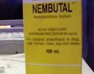 Nembutal Pentobarbital sodio de alta calidad