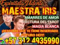 lectura del tarot en manizales  3124935990 vidente espiritista trabajos de magia blanca amarres de amor