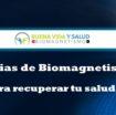 Terapias de Biomagnetismo