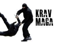 PRACTICA KARATE, AIKIJUTSU Y KRAV MAG EN ACACÍAS, META