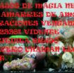 brujo de magia negra en medellin 3138629981 amarres de amor brujeria vudù