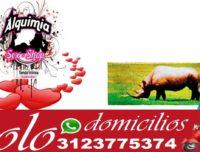 Rhino original retardante sexual Servicio a Domicilio
