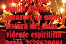 brujo de magia negra en manizales 3138629981 amarres de amor regreso de pareja dominada