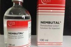 Compra de Nembutal y Rohypnol en línea  whatsapp..id …. + 44 7743 121492