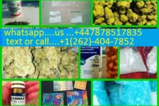 buy Medical Marijuana and Cannabis Oil,CBD OIL online