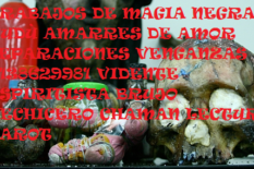 brujo de magia negra en bogota 3138629981 trab ajos de brujeria vudù