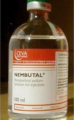 Una muerte pacífica con pentobarbital de sodio