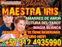 Lectura del tarot en manizale 3124935990 vidente espiritista