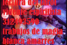 Lectura del tarot en bucaramanga   3124935990 servicios esotericos