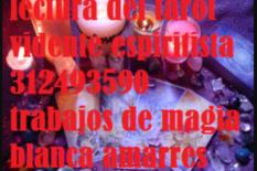 Lectura del tarot en bogota 3124935990 servicios esotericos