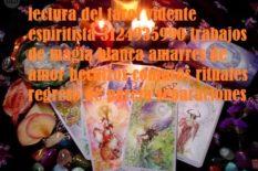 amarres de amor en pasto 3124935990 trabajos de magia blanca regreso de pareja