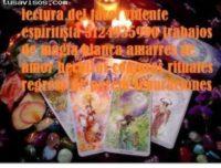 Vidente En cucuta 3124935990 lectura del tarot Amarres De Amor Regreso De Pareja Espiritista Trabajos De Magia Blanca