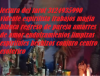 Lectura del tarot en pasto 3124935990 vidente