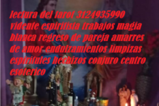 Vidente en armenia 3124935990 lectura del tarot